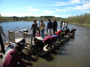 Japanese univeristy exchange students searching for insects in the water.