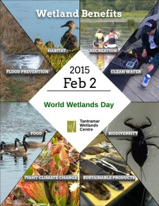 WORLD WETLANDS DAY - Flyer